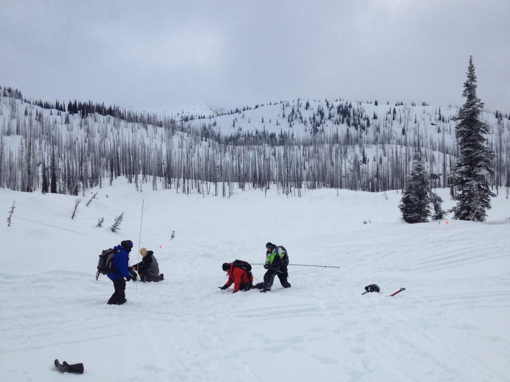 AST 2 Avalanche Skills Training Trigger Point Snow Services